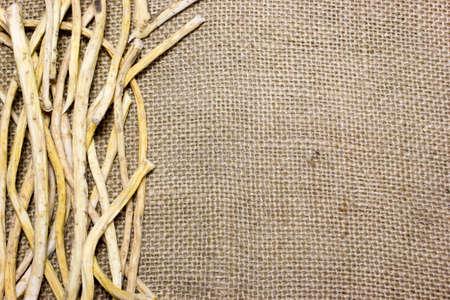 caustic: Horseradish root on sacking background Stock Photo