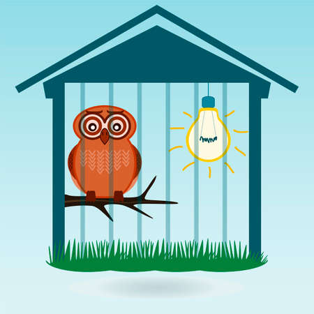 injustice: Owl in the zoo, in the cage light is on. Protection of wild animals, birds.