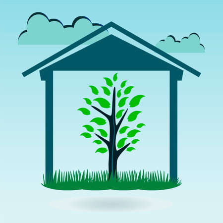 young tree: A young tree under the roof. Protection of nature, plants, ecology. Eco House.