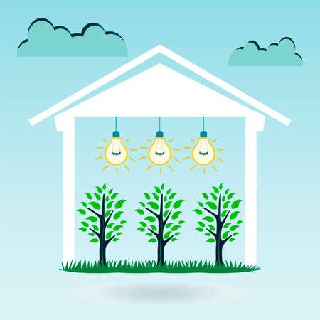 invernadero: Tres �rbol joven bajo el techo de la casa iluminada por la bombilla. Las plantas en el invernadero, naturaleza, planta, casa ecol�gica.