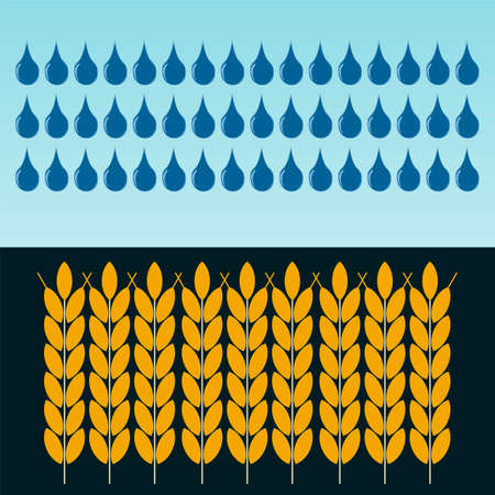 drought: Ears of wheat in the rain. The cultivation of grain. Investments in agriculture. Dealing with drought. Illustration