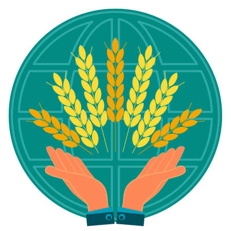 agribusiness: Ears with Golden grains of wheat in his hands on globe. Agribusiness, investment in agriculture. To save the harvest.
