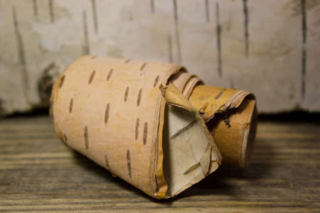 convolute: Roll of birch Bark on wooden Stock Photo