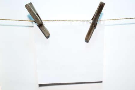 blank sheet: hoja de papel en blanco en la pinza de la ropa de madera
