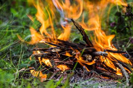 The fire in the green grass. A fire in the woods. Barbecue on the nature, picnic.