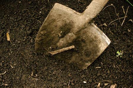 Garden spade in ground. Gardening, preparation for planting.