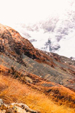 Montagne aux cheveux roux. Herbe jaune dans la vallée d'automne. Roches sous la neige à l'horizon.
