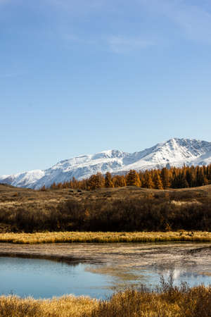 Autumn lake with mountain range on horizon. Valley with yellow dry grass Banco de Imagens - 122172467