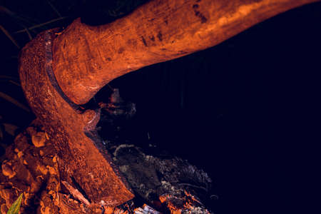 Old axe on dark stump. Crime under cover of night in woods