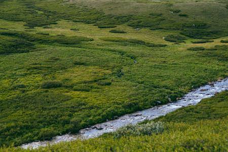 River in green hills. Swift stream in green meadow Zdjęcie Seryjne
