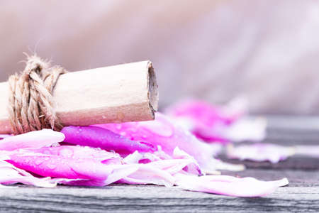 Roll of old paper on rose petals. Love letter, a wedding invitation. Romantic atmosphere of  holiday. Zdjęcie Seryjne