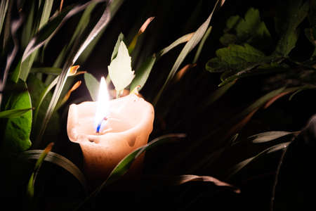 Solitary candle burns in summer garden at night