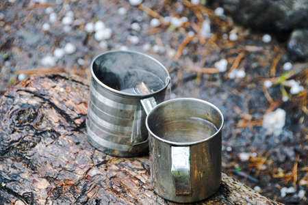 Two metal mugs on tree. Adventure in nature, tourism. Tea party in extreme conditions.