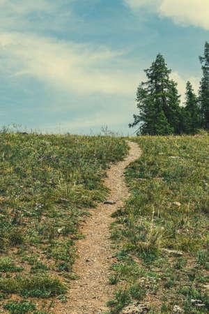 Dirt Hiking trail for trekking through green meadow Zdjęcie Seryjne