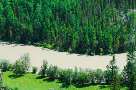 Mountain river in rocks. Flow of water in mountain valley in Altai Zdjęcie Seryjne