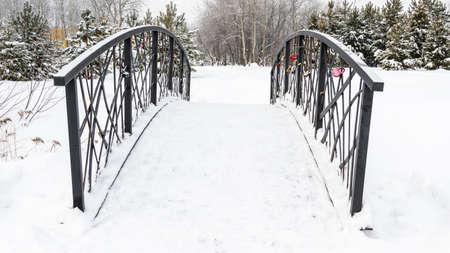 metal railing of bridge in winter city park