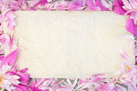 Frame of pink peony petals. Background for romantic message, wedding invitation