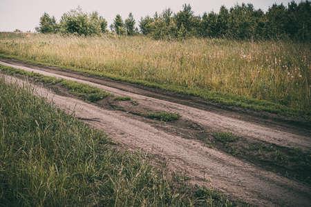Dirt road in green field. Transportation in countryside.