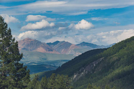 valley with pine forest and rocky peaks on horizon, mountain tourism, outdoor relaxation