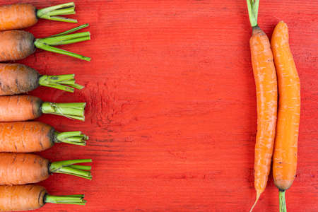 carrots with green stems on red wooden table, cooking vegetarian dish, fresh vegetables from farm