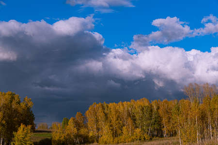 Autumn landscape with yellow trees and clouds