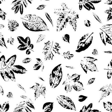 Stylish wallpaper with tree leaves. Leaf prints in black. Postcard with leaves prints.