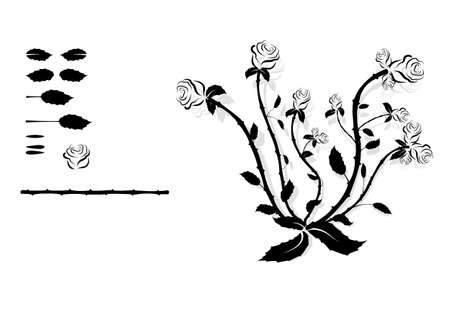Vintage pattern of black and white flowers. Floral decorative element.
