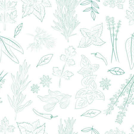 Seamless pattern with a set of spices and herbs. Vector Collection of hand drawn Spices and Herbs. Botanical plant illustration. Vintage Medicinal Herbs and plants.