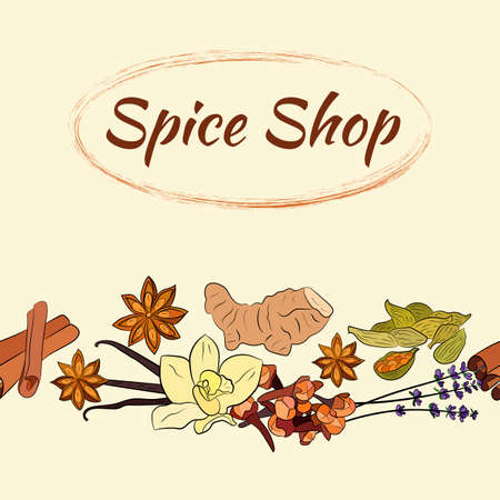 A large set of culinary spices and herbs. Popular culinary plants, natural health care. Vintage Medicinal Herbs and plants. Vanilla and cinnamon, cloves and star anise, ginger.