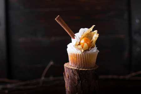 winter cherry: Chocolate cupcakes with white butter cream, decorated with winter cherry on a dark wooden background. Decorated with cinnamon sticks