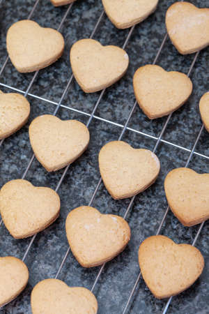 Many heart shaped cookies fresh from the oven, cooling off on metal grid photo
