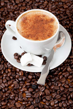 cofffee: Cup of fresh coffee surrounded by cofffee beans