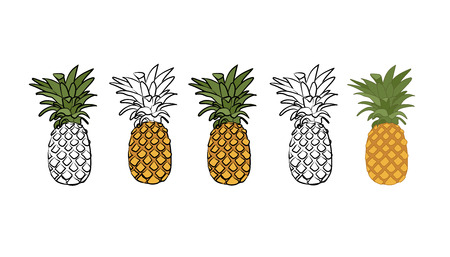 Illustration of pineapple Vectores