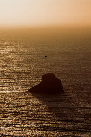 A seagull flying over the ocean during a sunset