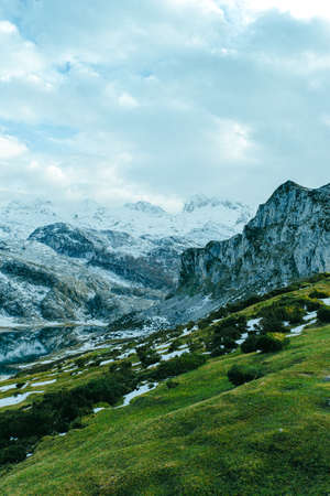 A close up of the peak of the mountain range with a vibrant green meadow
