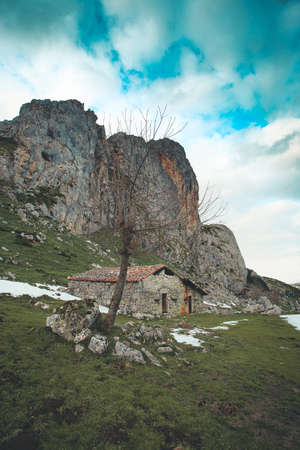 A house or refuge in the middle of the mountains of asturias and lake of covadonga during winter with a green grass and snow