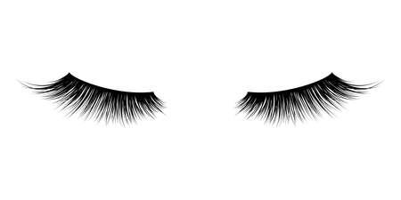 Eyelash or lash vector icons. Vector false long eyelashes for mascara design