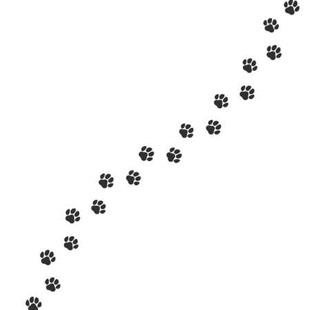 Paw print trail on white background. Vector cat or dog wild animal pawprint walk line, paw path pattern background