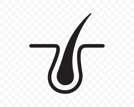Hair follicle vector icon in flat line. Hair bulb follicle, shampoo treatment, dandruff dermatology and hair transplantation symbol