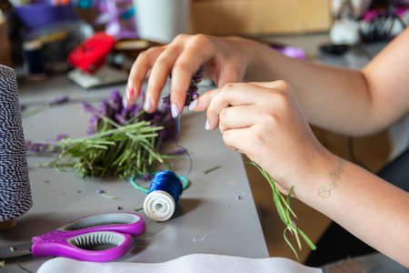 Hands of a florist at work. Working table with lavenders, old scissors and hank of hemp twine. Dry compositions of flowers plants for the interior. Reklamní fotografie