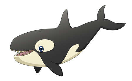 An illustration depicting a cute cartoon killer whale singing  Vector