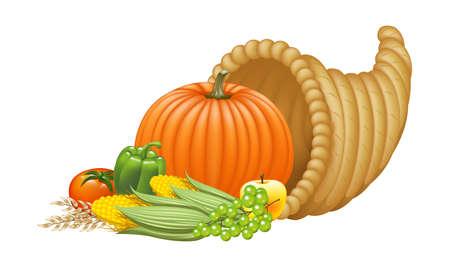 harvest cone cornucopia: Realistic Cornucopia Illustration