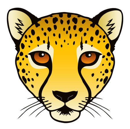 A vector ink illustration of a cheetah s head