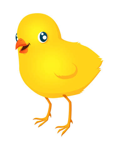 Illustration depicting a fuzzy baby chicken  Vector