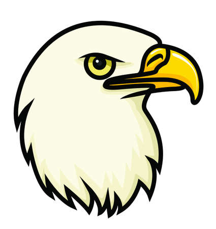 swooping: A cartoon vector drawing of a bald eagle s face