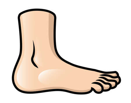 Illustration of a cartoon foot in side view  向量圖像