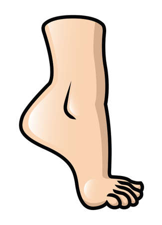 Illustration of a raised cartoon foot  Vector