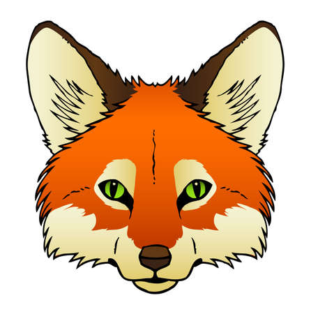 A hand drawn of a red fox s face
