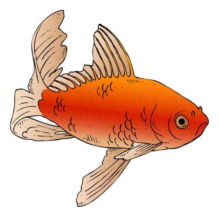 inkttekening van een zwemmende goudvis Stock Illustratie