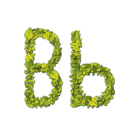 uppercase: Leafy storybook font depicting a letter B in upper and lower case